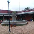 museo las lilas patio